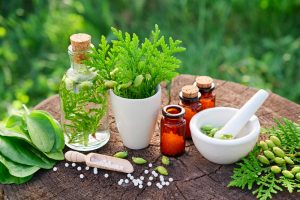 Se former aux médecines douces avec l'IEMN (Institut Européen de Médecine Naturelle)